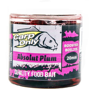 Carp only dipovaný boilies 250ml 20mm -garlic cake